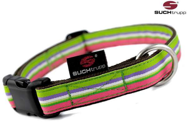Hundehalsband Preppy