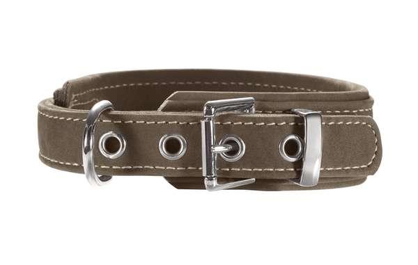 Hunter Hundehalsband Hunting Comfort