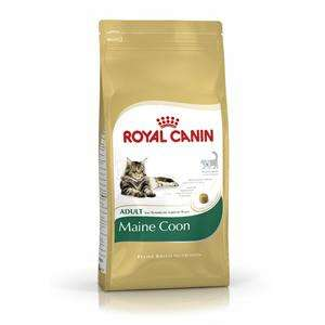 Royal Canin Maine-Coon 31