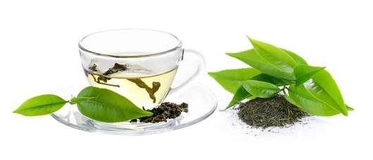Rooibos Tee grün | Wie auf Wolke 7 | Mango-Pfirsich Bio Tee
