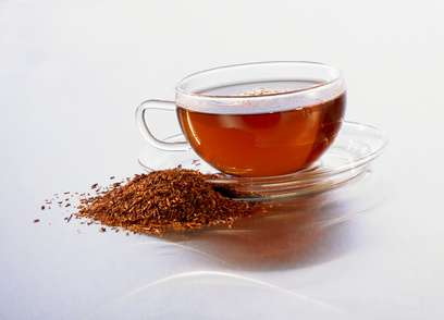Rooibos Bio Tee | Orange