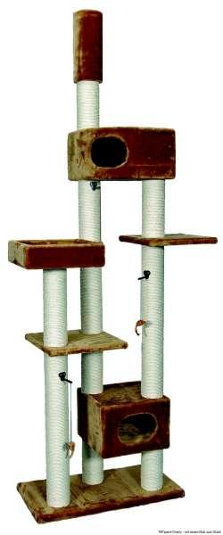 Kratzbaum Aramis, camel, 80x40x230-255cm